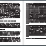 polysingularity-black-book